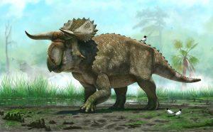 Nasutoceratops-titusi-splash